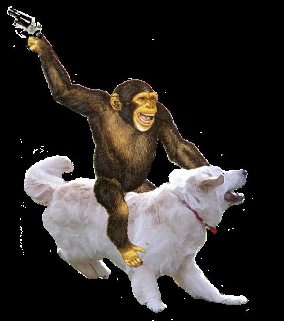 Money Riding Dog With Gun